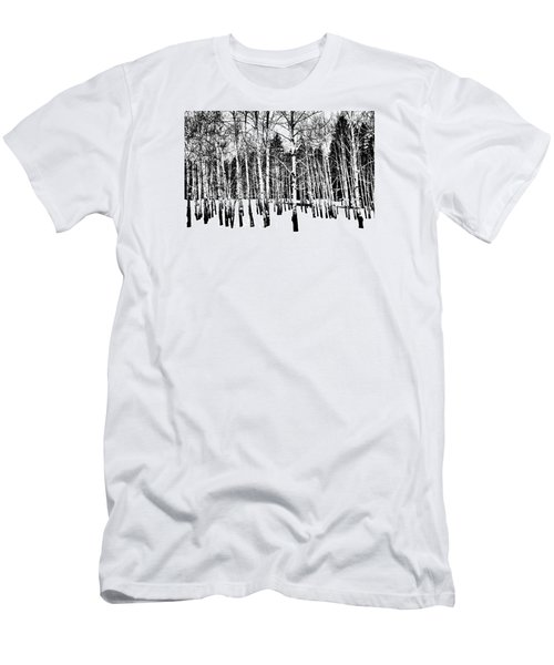 Parade Of Aspens Men's T-Shirt (Athletic Fit)