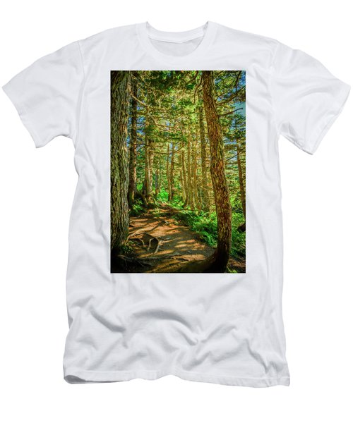 Path In The Trees Men's T-Shirt (Athletic Fit)