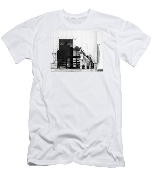 Peak-a-boo Calf Men's T-Shirt (Slim Fit) by Dan Traun