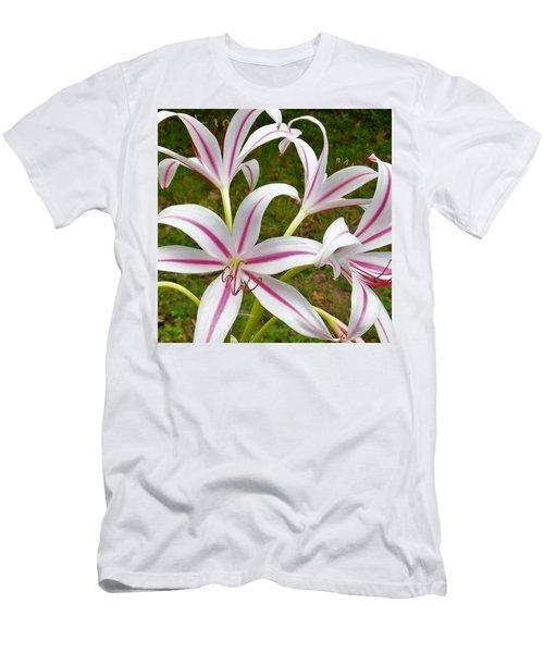 Peppermint Lilies Men's T-Shirt (Athletic Fit)