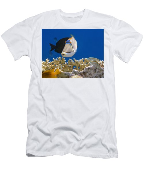 Picasso Fish And Klunzingerwrasse Men's T-Shirt (Athletic Fit)