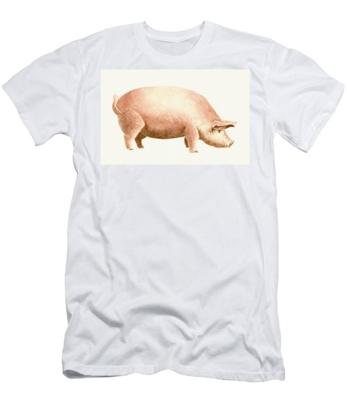 Pig Men's T-Shirt (Athletic Fit)