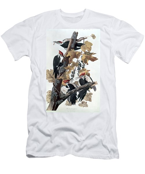 Pileated Woodpeckers Men's T-Shirt (Athletic Fit)