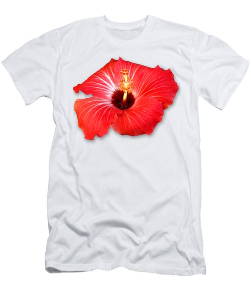 Pistil Power 2 Sehemu Mbili Unyenyekevu Men's T-Shirt (Slim Fit) by Bob Slitzan