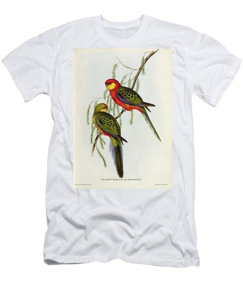 Platycercus Icterotis Men's T-Shirt (Athletic Fit)