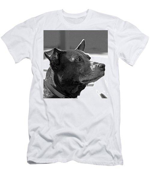 Please? Men's T-Shirt (Athletic Fit)