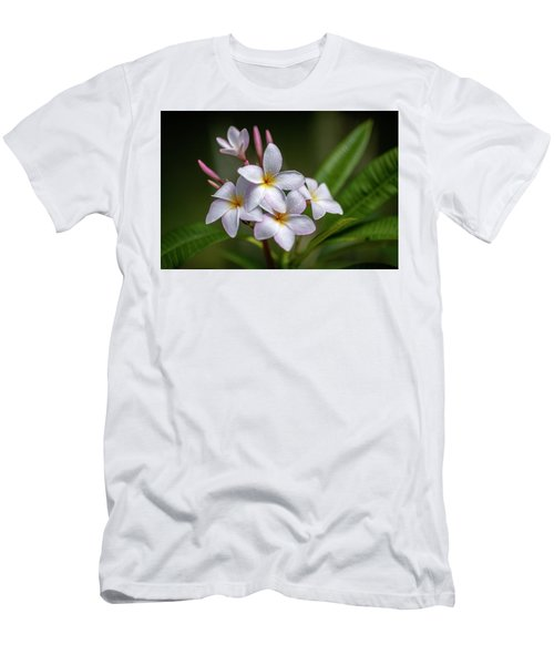 Plumeria 1 Men's T-Shirt (Athletic Fit)