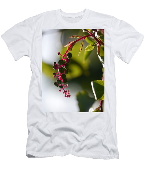 Poke Sallet Anyone? Men's T-Shirt (Slim Fit) by Jane Ford
