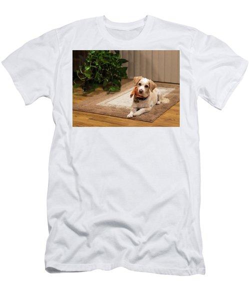Portrait Of A Dog Men's T-Shirt (Athletic Fit)