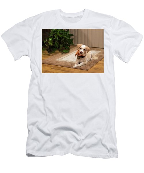 Portrait Of A Dog Men's T-Shirt (Athletic Fit)