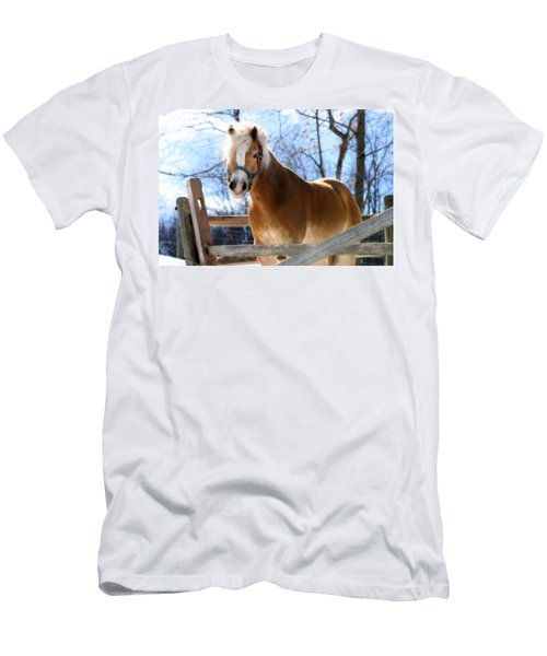 Men's T-Shirt (Slim Fit) featuring the photograph Portrait Of A Haflinger - Niko In Winter by Angela Rath