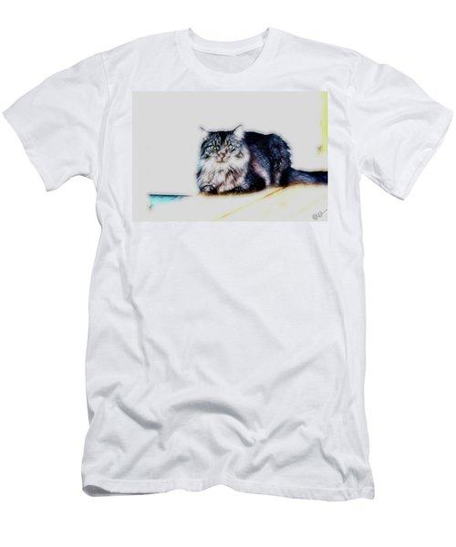 Portrait Of Maine Coon, Mattie Men's T-Shirt (Athletic Fit)