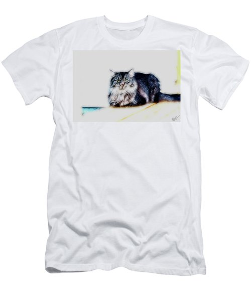 Portrait Of Maine Coon, Mattie Men's T-Shirt (Athletic Fit)