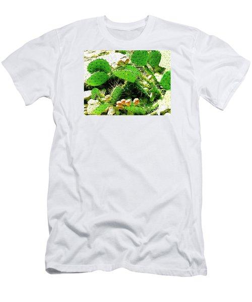 Prickly Pear Cactus Fruit Men's T-Shirt (Slim Fit) by Merton Allen