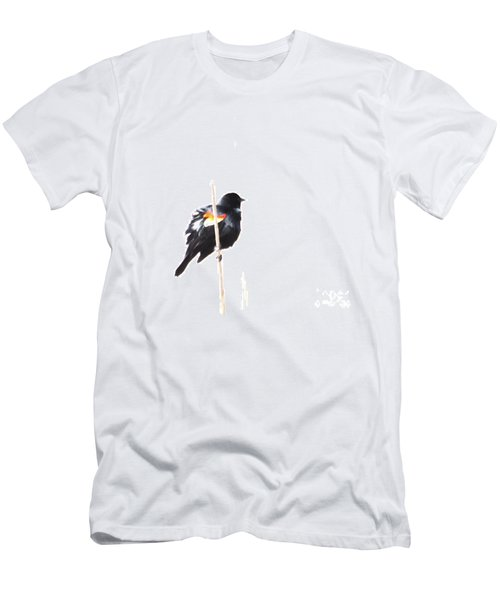 Puffed Up Red-winged Blackbird Men's T-Shirt (Athletic Fit)