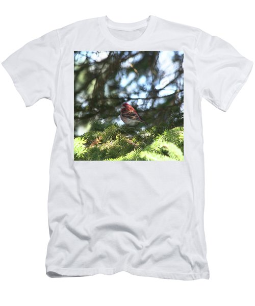 Purple Finch Men's T-Shirt (Athletic Fit)