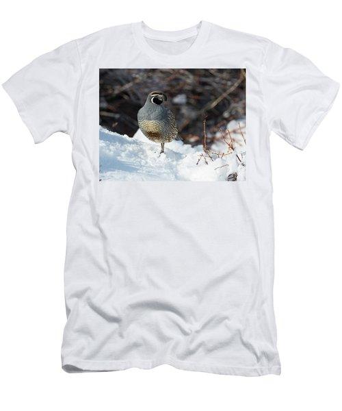 Quail Hollow Men's T-Shirt (Athletic Fit)