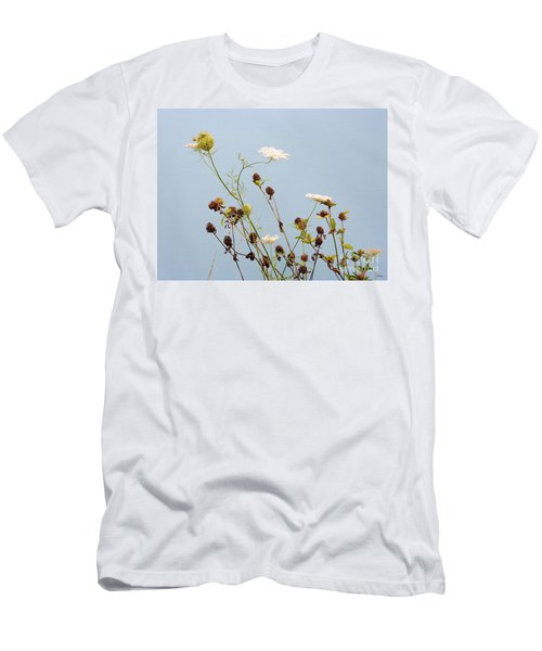 Queen Anne's Lace And Dried Clovers Men's T-Shirt (Slim Fit) by Lise Winne