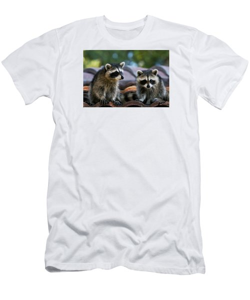 Racoons On The Roof Men's T-Shirt (Slim Fit) by Dorothy Cunningham