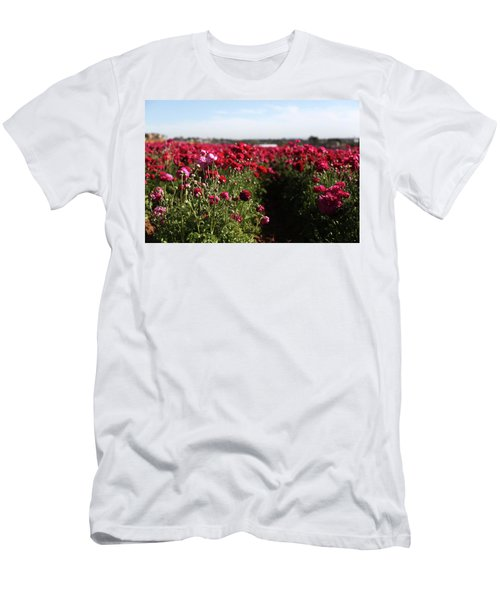 Ranunculus Field Men's T-Shirt (Athletic Fit)