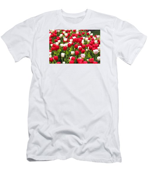 Red And White Tulips Men's T-Shirt (Slim Fit) by Bev Conover