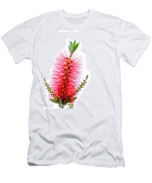 Red Bottle Brush Against An Overcast Sky Men's T-Shirt (Slim Fit) by Debra Martz