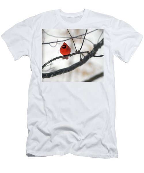 Men's T-Shirt (Slim Fit) featuring the photograph Red Cardinal In Snow by Marie Hicks