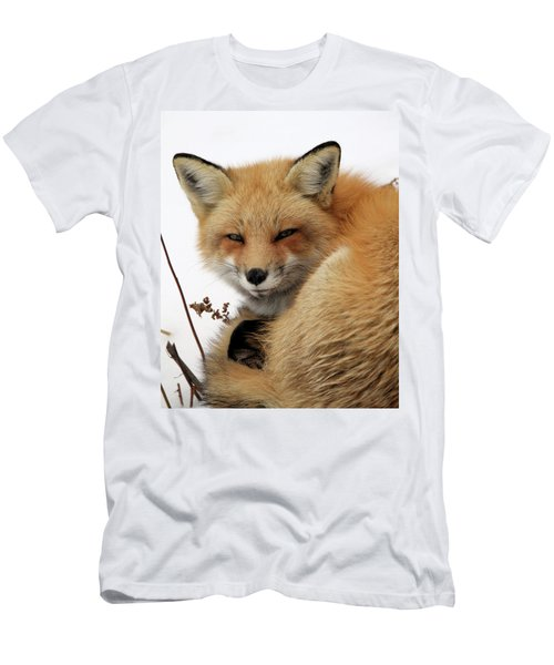 Men's T-Shirt (Slim Fit) featuring the photograph Red Fox In Snow by Doris Potter
