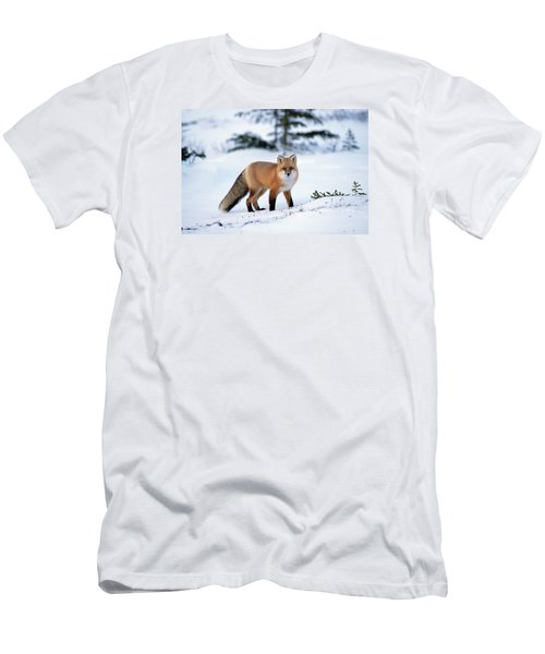 Men's T-Shirt (Athletic Fit) featuring the photograph Red Fox Vulpes Vulpes Portrait by Konrad Wothe