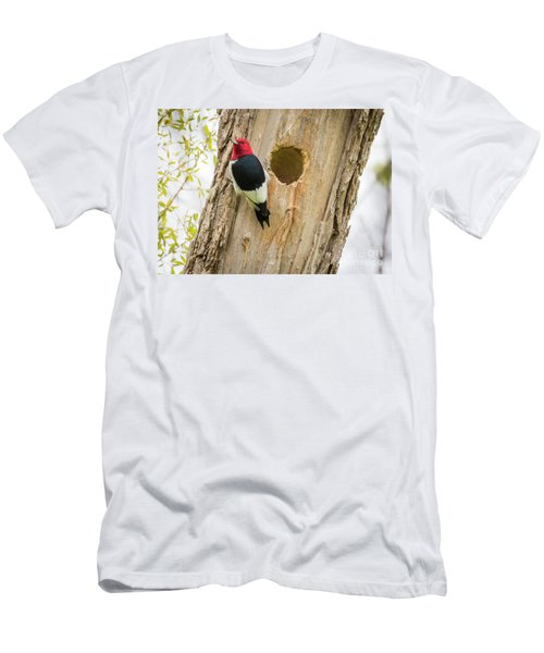 Red-headed Woodpecker At Home Men's T-Shirt (Slim Fit) by Ricky L Jones