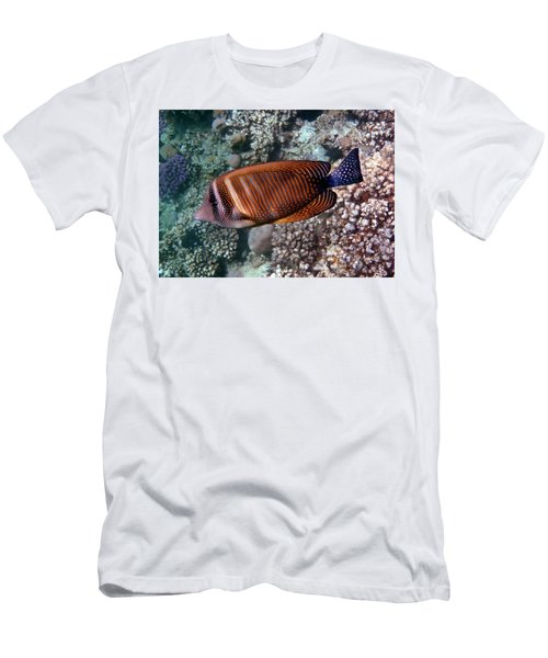Red Sea Sailfin Tang 3 Men's T-Shirt (Athletic Fit)