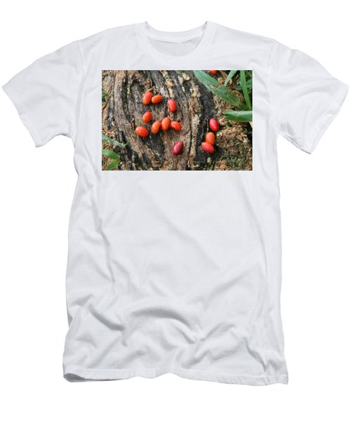 Red Seeds Men's T-Shirt (Athletic Fit)