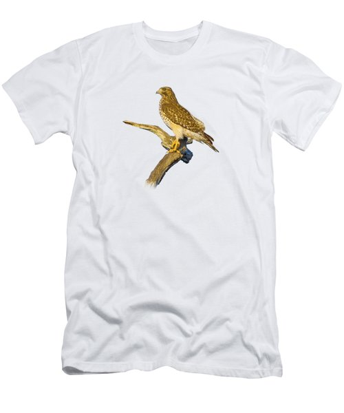 Red Shouldered Hawk Perch Men's T-Shirt (Athletic Fit)