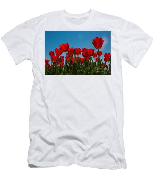 Red Tulips Men's T-Shirt (Slim Fit) by John Roberts
