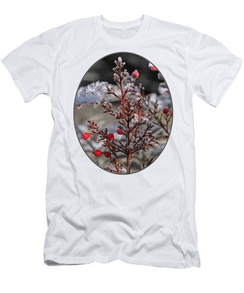 Red Winter Berries Of Nandia Domestica Men's T-Shirt (Athletic Fit)
