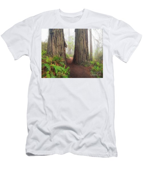 Redwood Trail Men's T-Shirt (Athletic Fit)