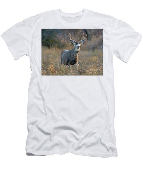 Regal Buck Men's T-Shirt (Athletic Fit)