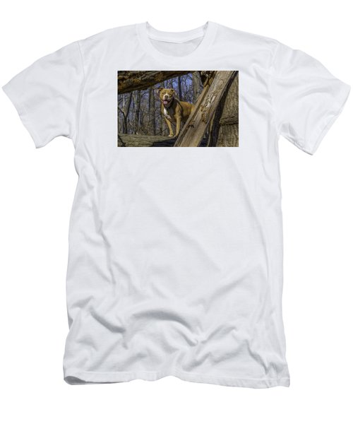 Remy In Tree Oil Paint More Pop Men's T-Shirt (Athletic Fit)