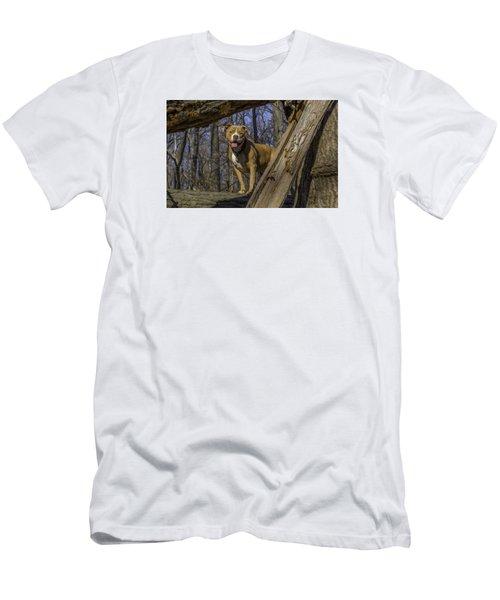 Remy In Tree Oil Paint More Pop Men's T-Shirt (Slim Fit)