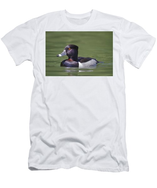Ring-necked Duck Profile Men's T-Shirt (Athletic Fit)