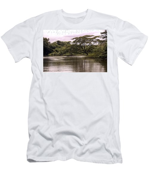 Riparian Rainforest Canopy Men's T-Shirt (Athletic Fit)