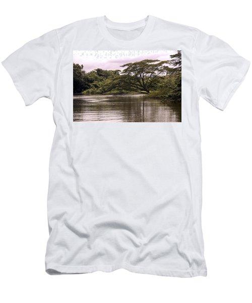 Riparian Rainforest Canopy Men's T-Shirt (Athletic Fit)