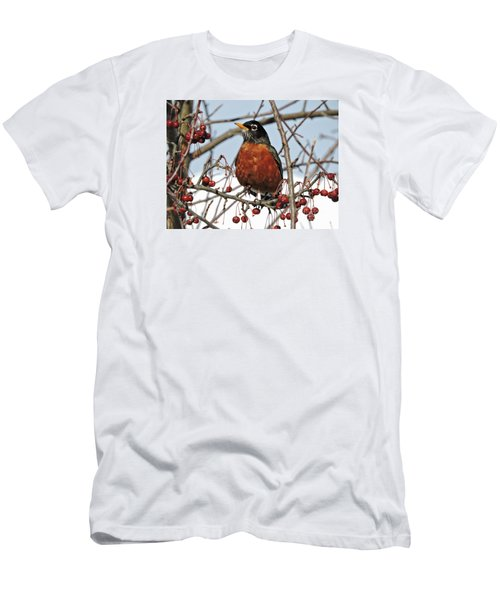 Robin In Winter Men's T-Shirt (Slim Fit) by Marcia Lee Jones