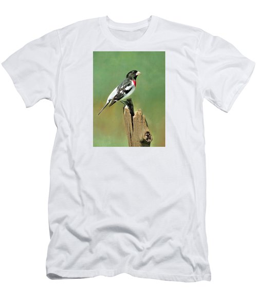Rose Breasted Grosbeak Men's T-Shirt (Athletic Fit)