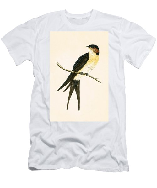 Rufous Swallow Men's T-Shirt (Slim Fit) by English School