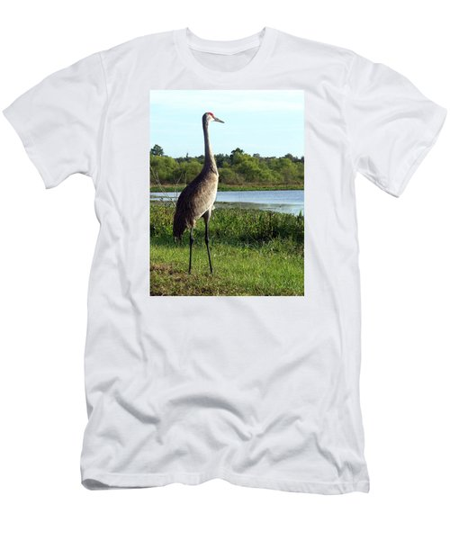 Sandhill Crane 019 Men's T-Shirt (Slim Fit) by Chris Mercer