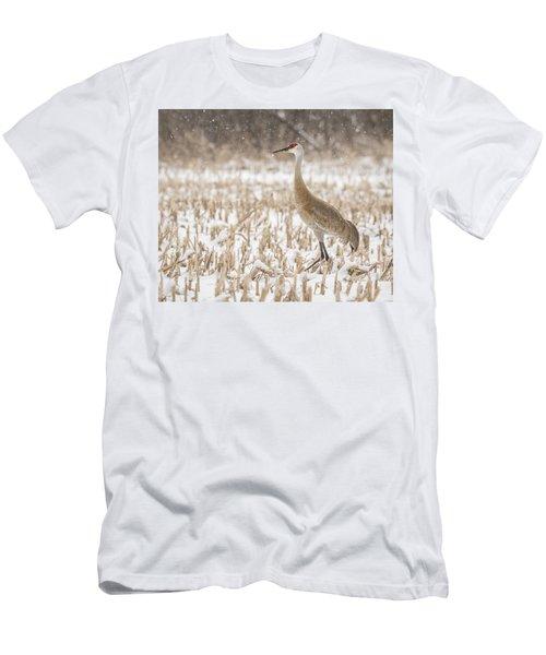 Sandhill Crane 2016-3 Men's T-Shirt (Athletic Fit)