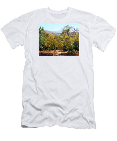 Santiago Creek Trail Men's T-Shirt (Slim Fit) by Timothy Bulone