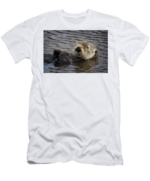See Otter Posing Men's T-Shirt (Athletic Fit)