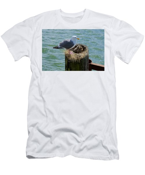 Seagull Family Men's T-Shirt (Athletic Fit)